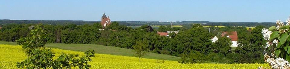 Blick auf Penzlin vom Mühlenberg